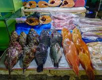 Fish market in Manila, Philippines. Seafood for sale at local market in Manila, Philippines Stock Images