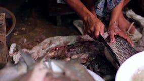 Fish market in Manmar stock footage