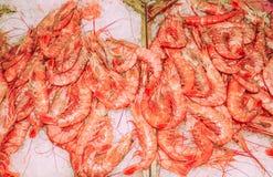 Fish market. The Mediterranean, Europe Royalty Free Stock Photo