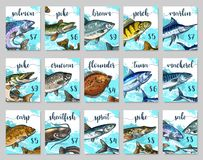 Vector price cards sketch set for fish shop market. Fish market price cards templates. Vector sketch of sea or ocean fishes salmon, pike or bream and perch or Royalty Free Stock Image