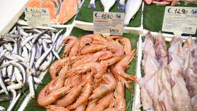 Daily fish market in Rome. With different fresh product stock footage