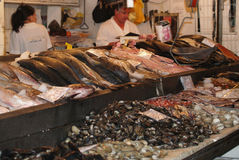 Fish market, Santiago de Chile. Fresh fishes, seafood and salesman Royalty Free Stock Image