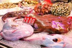 Fish market. Stock Photos