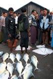Fish Market in Sittwe, Myanmar Royalty Free Stock Photography