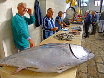 Fish market, Split, Croatia Stock Image