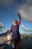 The fish market in Sri Lanka Stock Image