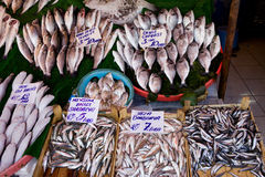 Fish Market Stall Royalty Free Stock Image