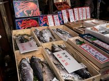 Fish Market Stall stock image