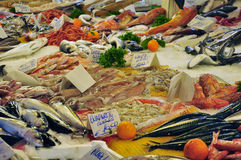 Fish market stand ballaro in Palermo, Sicily, Italy. Stock Photography