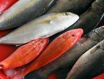 Fish Market in Taiwan Stock Photos