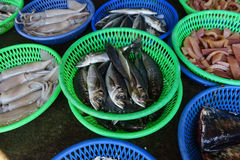 Fish Market at taiwan. Dvd  cd are stacked and in shadow under the white background Royalty Free Stock Photography