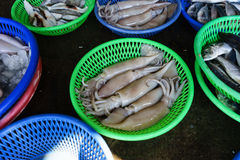 Fish Market at taiwan. The first fish being sold at the market Taiwan Royalty Free Stock Photo