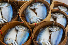 Fish market in Thailand Stock Photos