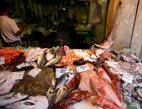 Fish market in Venice 2. Royalty Free Stock Photo