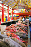 Fish market in Victoria, Seychelles. At the fish-market Sir Selwyn Selwyn-Clarke Market in Victoria with Cattle Egret (Bubulcus ibis), Shark, Bonito and Red Stock Photo