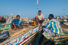 Fish market in Yemen Royalty Free Stock Photography