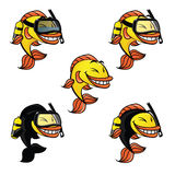 Fish the mascot, an animal from the seas, oxigen bottle and water glasses, diving suit. Mascot cartoon fish for fishing team or similar, it is a funny fish Royalty Free Stock Photography