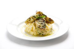 Fish & Mash 2 Royalty Free Stock Images