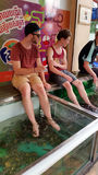 Fish Massage Service in Cambodia Stock Images