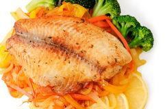 Fish Meal royalty free stock photography