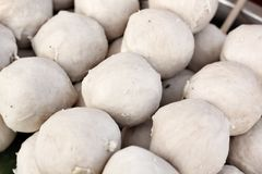 Fish meat ball Stock Image