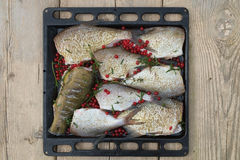 Fish Meat on a Black Tray Royalty Free Stock Photos