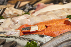 Fish Meat. Detail of various pieces of fish meat on a market stand Stock Photos