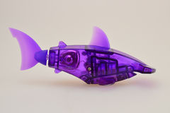 Fish mechanical. Aquabot purple mechanical fish toy Royalty Free Stock Photo