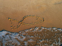 Fish from Mediterranean sea. Figure of a small fish on sand Royalty Free Stock Photos