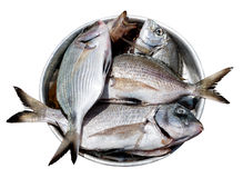 Fish in metal plate Royalty Free Stock Image