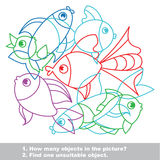 Fish mishmash colorful set in vector. Find all hidden objects on the picture. Find one unfit object Stock Images