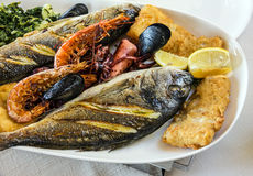 Fish and mix of sea food on the plate Stock Photography