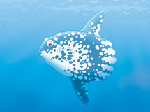 Fish-moon. Illustration of a large tropical sunfish swimming in blue water Stock Image