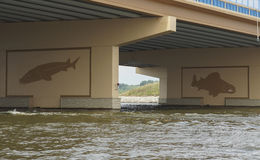 Fish Mural on Bridge. Mural depicting fish (lake sturgeon and walleye) on a new bridge across the Fox River at Lake Butte des Morts, Wisconsin Royalty Free Stock Photos