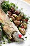 Fish with mushrooms Stock Image