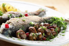 Fish with mushrooms Stock Images