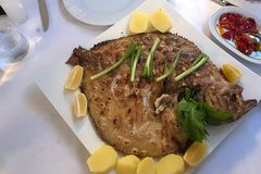 This fish name is Kalkan traditional name in Turkey Royalty Free Stock Image