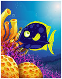 A fish near the beautiful corals. Illustration of a fish near the beautiful corals on a white background Royalty Free Stock Photos