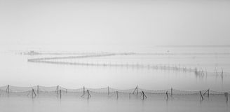 Fish net Royalty Free Stock Images