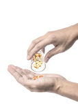 Fish oil capsules on hand Royalty Free Stock Image