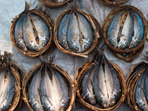 Fish on open market in Asia Royalty Free Stock Images