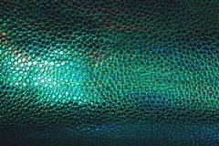 Free Fish Or Reptile Scale Dark Moody Background Stock Photography - 150479332