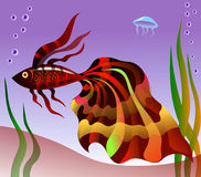 Fish. Orange fish with colorful fins Stock Images