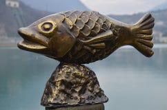 A fish. Out lake Stock Image