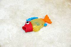 Fish out of water Stock Photo