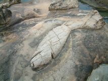 Fish out of water. Sandstone eroded into shape of a fish, Yehliu, Taiwan Royalty Free Stock Photography