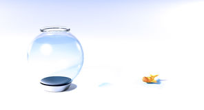 Fish out of water. Goldfish in small puddle of water next to fishbowl Stock Photography