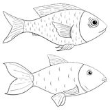 Fish outline drawing. Vector illustration isolated on white background Stock Photography