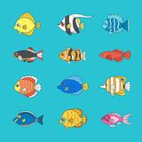 Fish outline multicolored vector icon set. Fish outline multicolored vector icon set tropical, marine, oceanic, freshwater Royalty Free Stock Photos