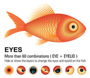 Fish Overwhite | VECTOR IMAGE. More than 60 combinations (eyes + eyelid Royalty Free Stock Image